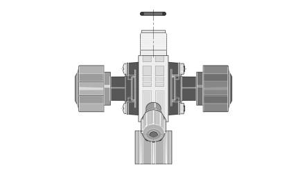 Prominent mfv multifunctional valve